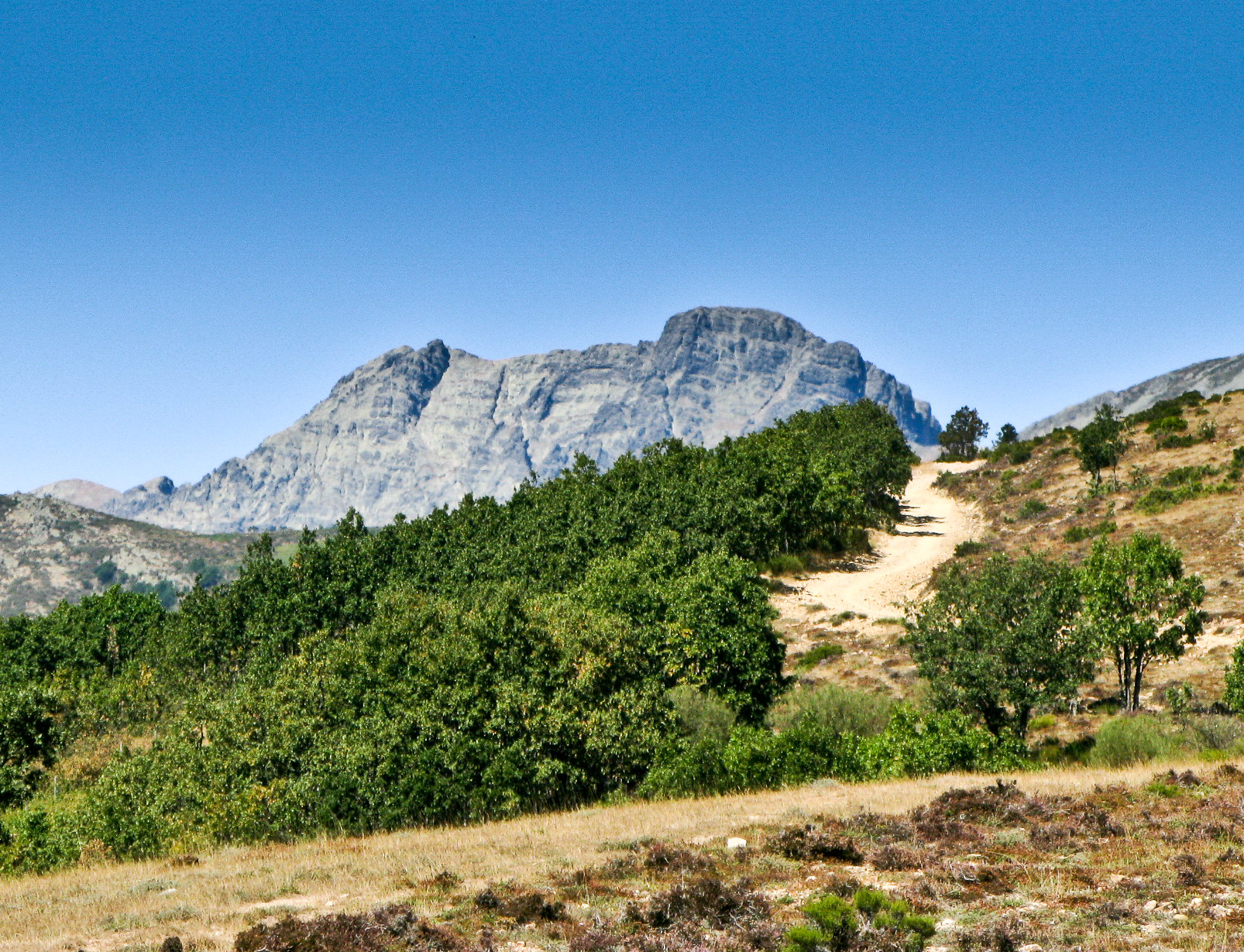 Mountain trail with a rocky mountain in the back in Palencia mountains